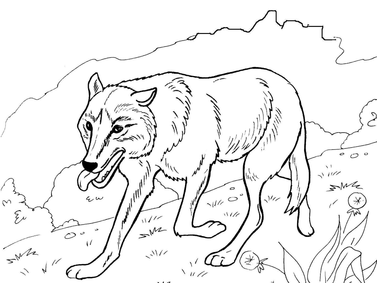 Как нарисовать ухо человека карандашом поэтапно