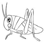 раскраски насекомые