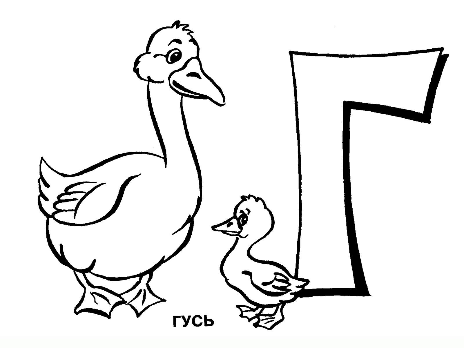 Раскраска на букву г для детей