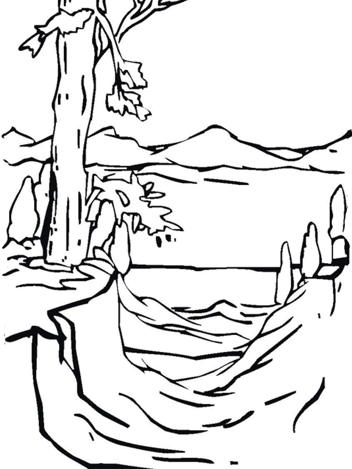 Картинки для раскраски природы