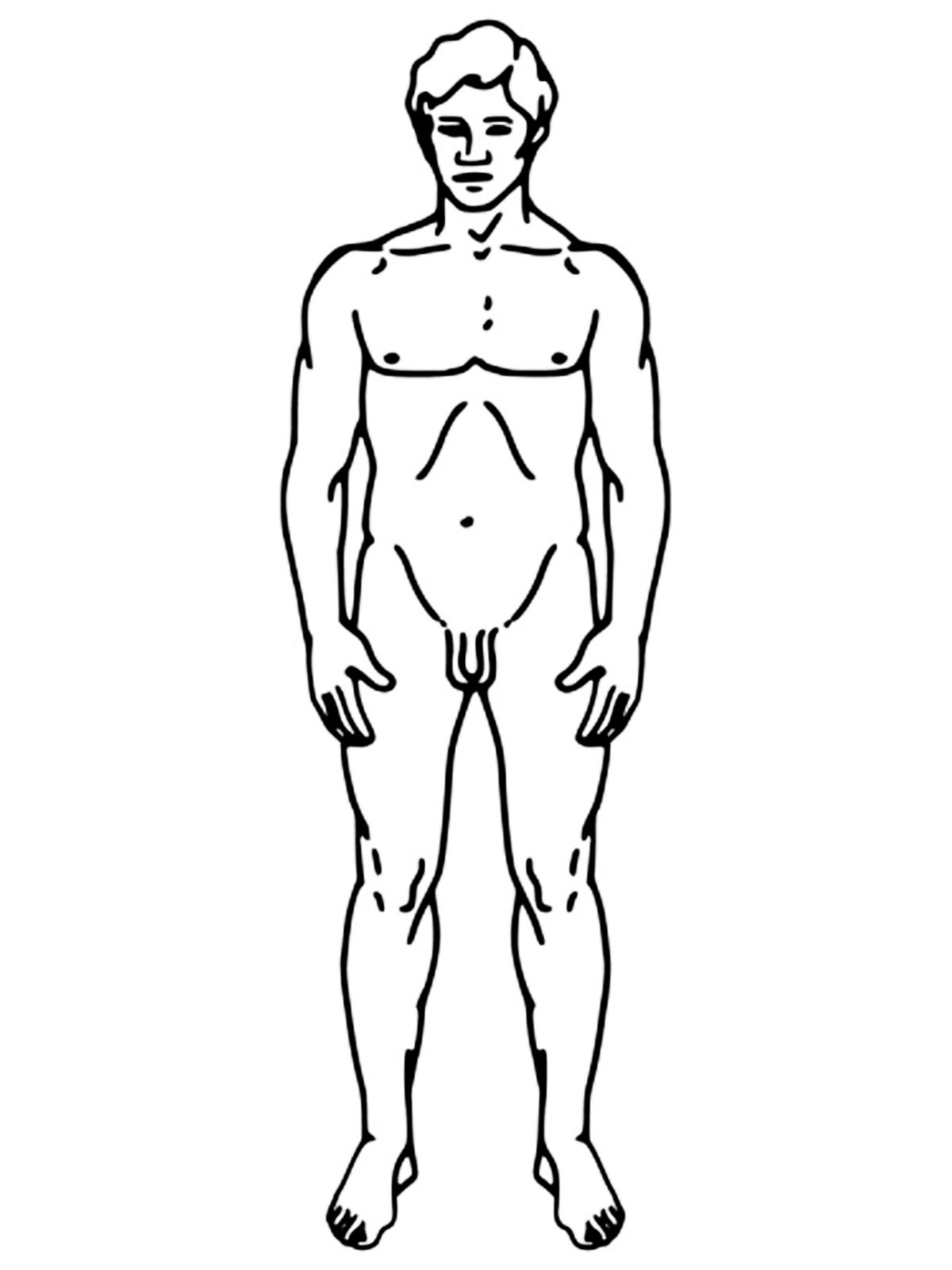 my coloring pages human body - photo#30
