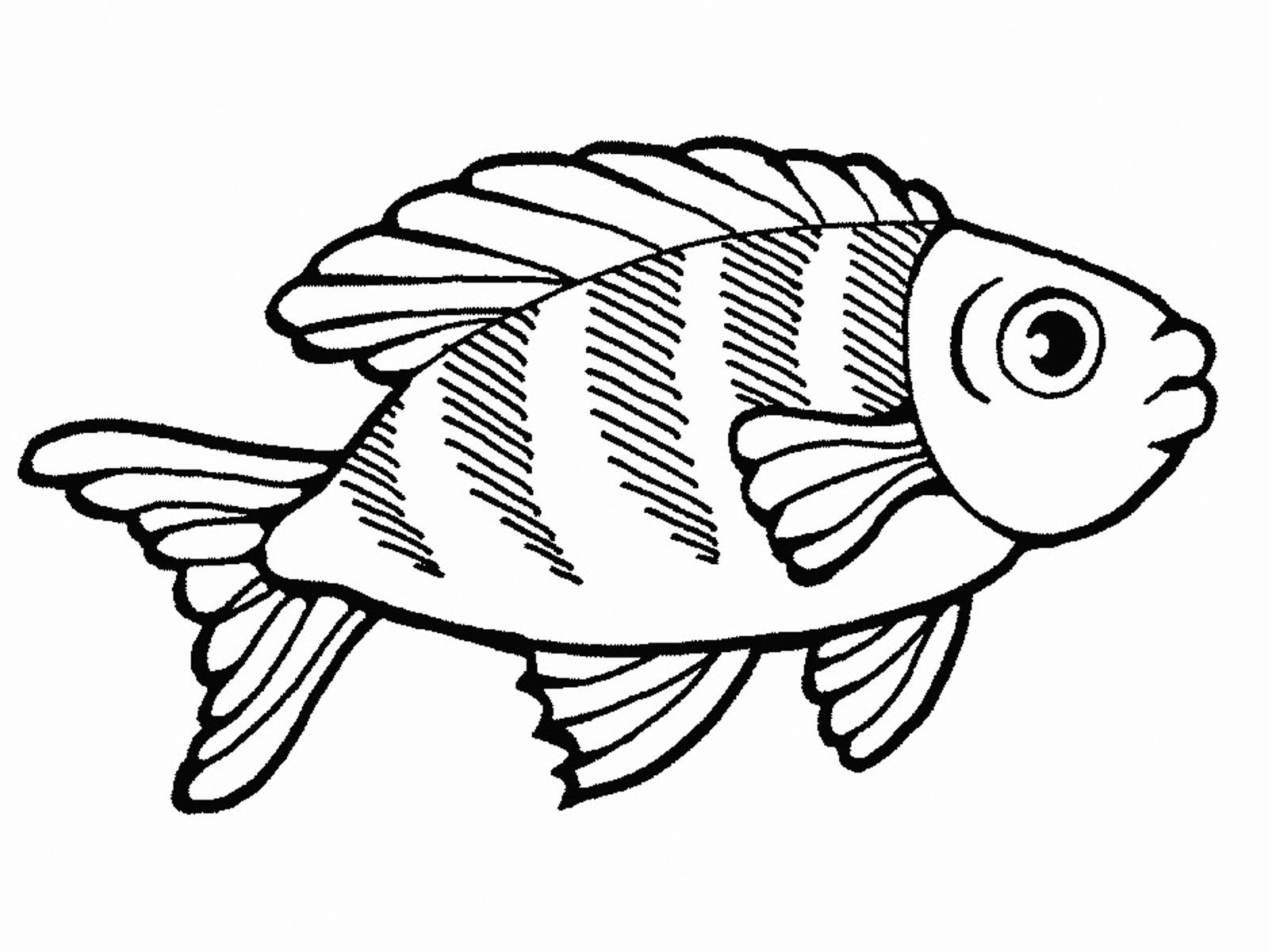 Раскраски рыбка распечатать