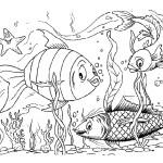 раскраски рыбы