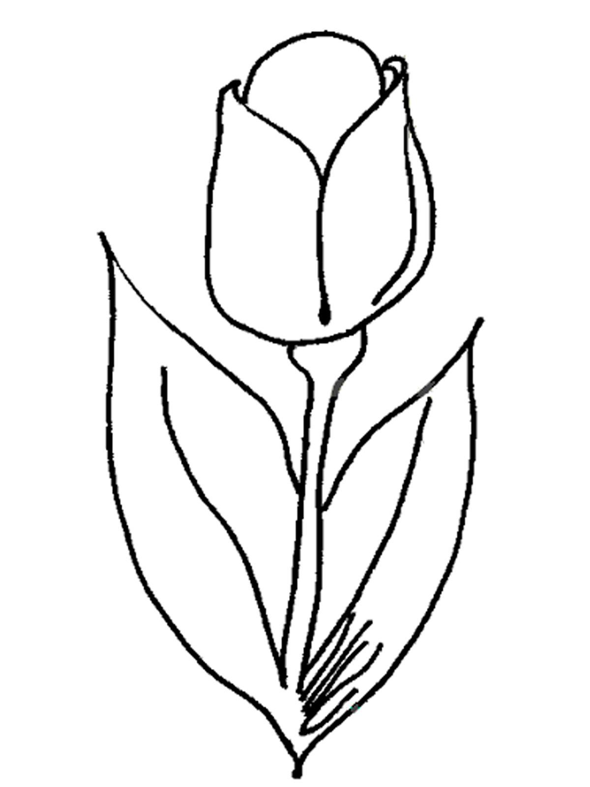 Картинки для распечатки цветы 8