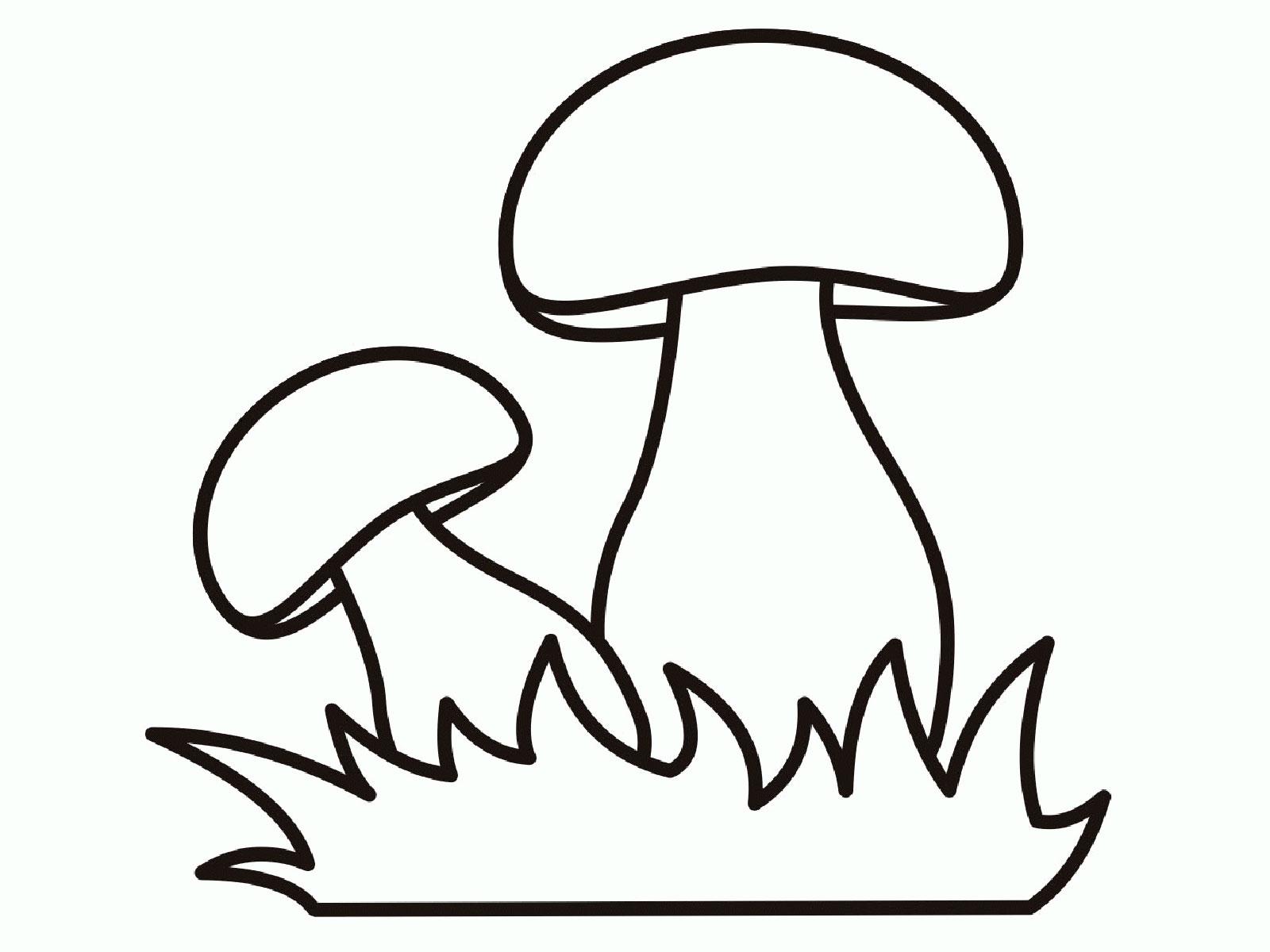 грибы раскраска картинка