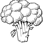 раскраски брокколи