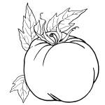 раскраски помидор