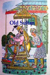 Old Sultan, Старый Султан