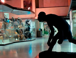 Ночь музеев 2013