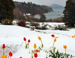 Рассказы о весне