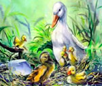 fairy-tales-the-ugly-duckling